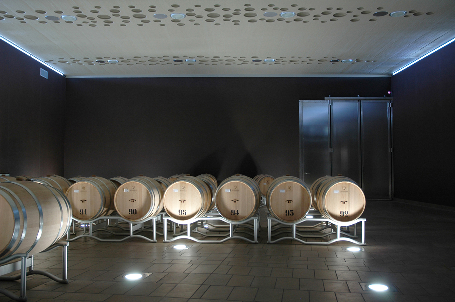 The Campo del Sole winery in Bertinoro: Photo 13