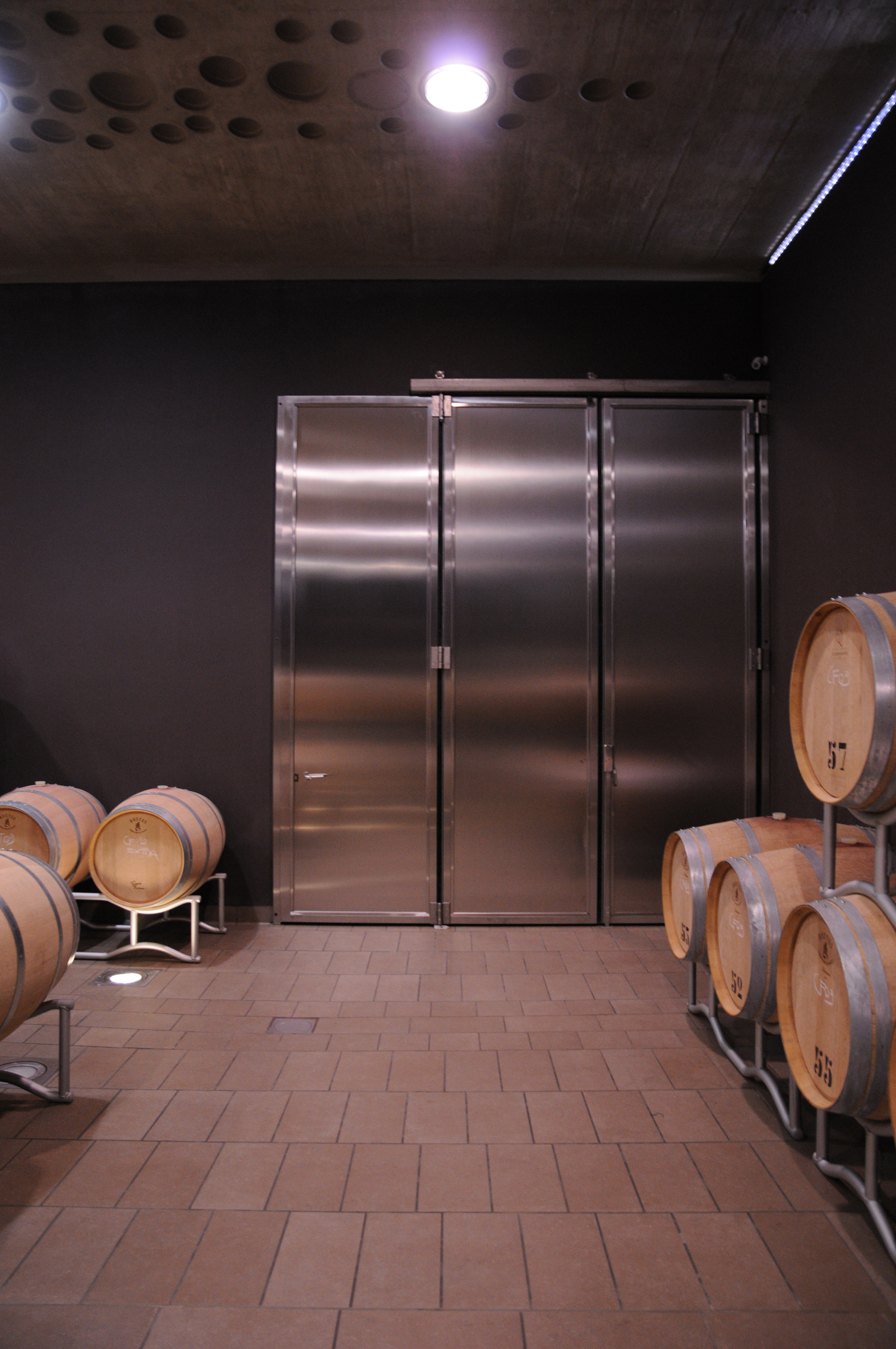 The Campo del Sole winery in Bertinoro: Photo 17