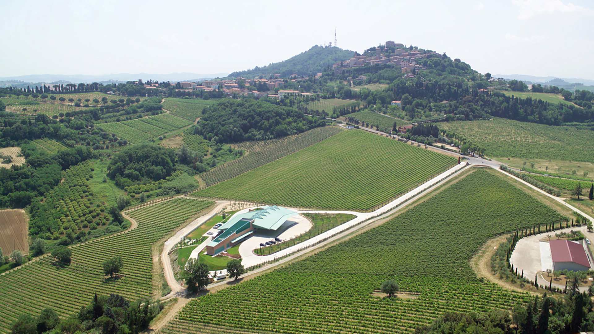 The Campo del Sole winery in Bertinoro: Photo 18